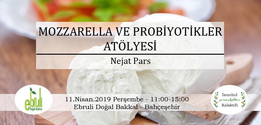 Mozzarella ve Probiyotikler Atölyesi