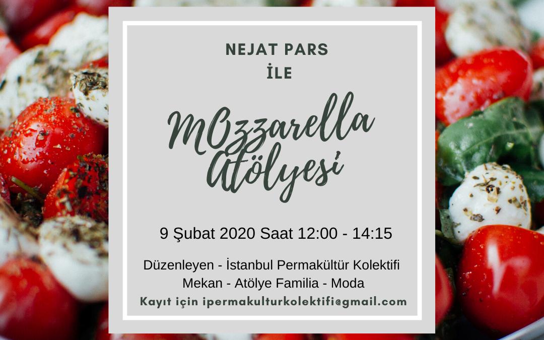 Mozzarella Atölyesi