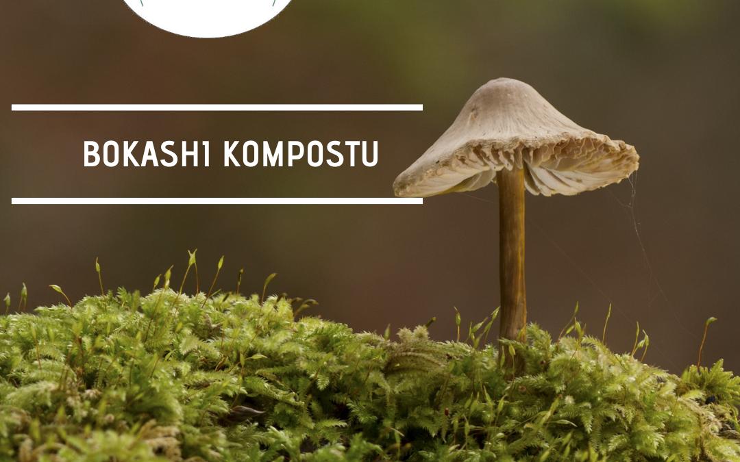 Bokashi Kompostu